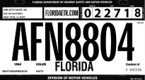 how to get a temporary license plate online